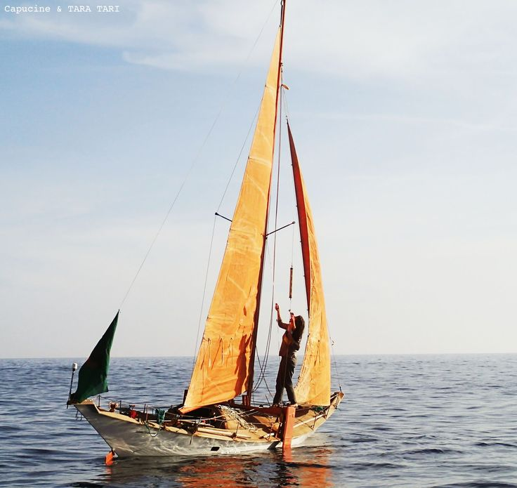 a39f9cbb931419e741c0595cbb86f89d--capucine-wooden-boats